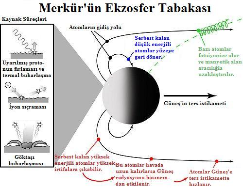 Merkür'ün Ekzosfer Tabakası