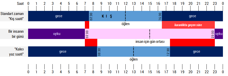 kis_insan