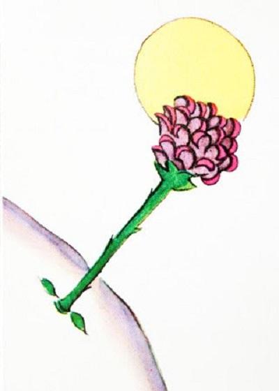 gezegendeki-gul